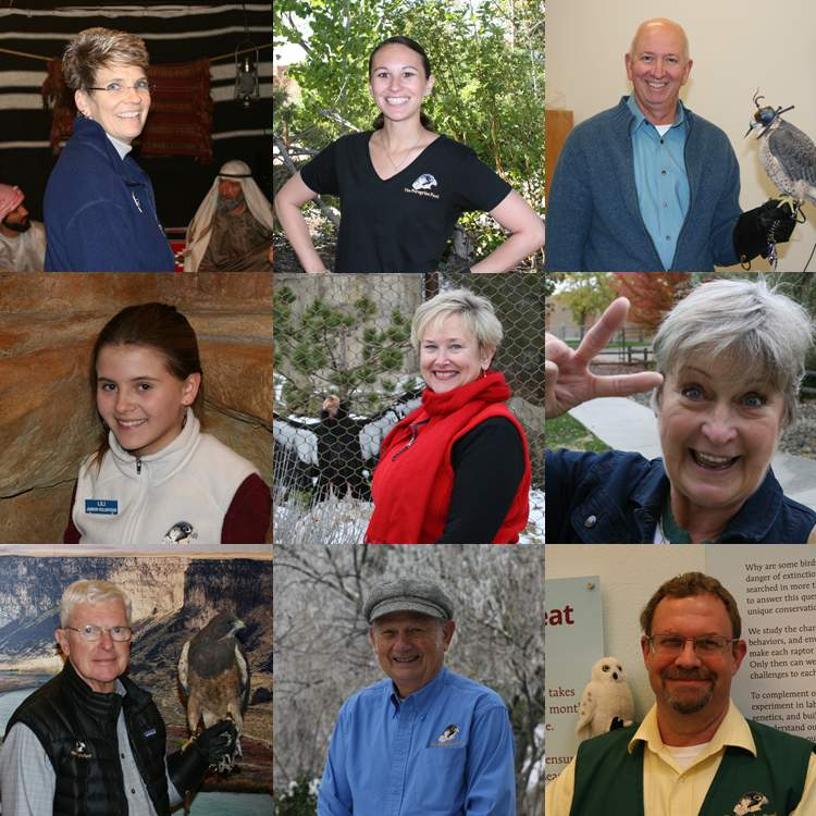 A collage of some the World Center for Birds of Prey's volunteers